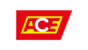 IT-Outsourcer DATAGROUP Referenz ACE, Logo