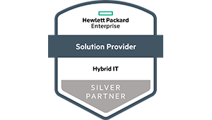 Logo HPE - DATAGROUP Partner