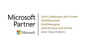 Logo Microsoft Partner - DATAGROUP Parner